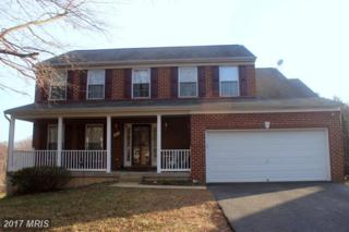 211 Leeds Court, Chestertown, MD 21620 (#KE9861355) :: Pearson Smith Realty