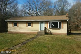 9028 Georgetown Road, Chestertown, MD 21620 (#KE9861409) :: Pearson Smith Realty