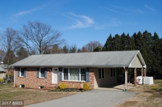 118 Malone Avenue, Chestertown, MD 21620 (#KE9870816) :: Pearson Smith Realty