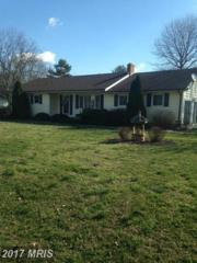 7885 Whitworth Court, Chestertown, MD 21620 (#KE9880109) :: Pearson Smith Realty