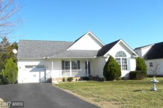 105 Cedarwood Drive, Galena, MD 21635 (#KE9881492) :: Pearson Smith Realty