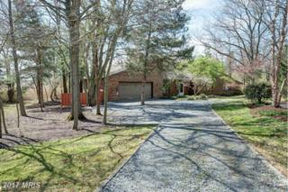 229 Birch Run Road, Chestertown, MD 21620 (#KE9919774) :: Pearson Smith Realty
