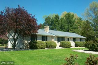 7857 Radcliffe Road, Chestertown, MD 21620 (#KE9922622) :: Pearson Smith Realty