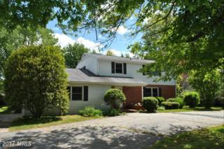515 Kent Street, Chestertown, MD 21620 (#KE9940756) :: Pearson Smith Realty
