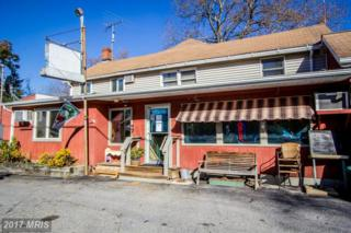 6746 Quaker Neck Road, Chestertown, MD 21620 (#KE9950933) :: Pearson Smith Realty