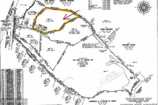 Lot 1 Off Chestnut Hill Loop, King George, VA 22485 (#KG9641025) :: Pearson Smith Realty