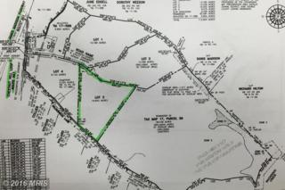 Lot 3 Off Chestnut Hill Loop, King George, VA 22485 (#KG9641028) :: Pearson Smith Realty