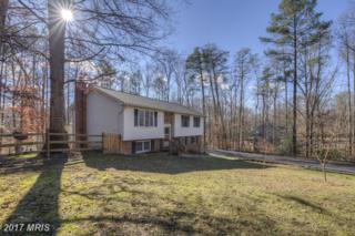 10569 Roosevelt Drive, King George, VA 22485 (#KG9845447) :: Pearson Smith Realty