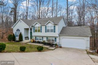 6041 Igo Road, King George, VA 22485 (#KG9860747) :: Pearson Smith Realty