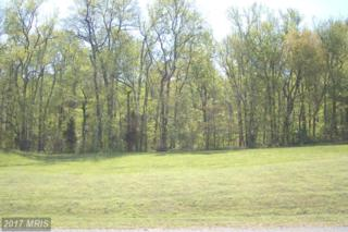 58 Marineview Drive, King George, VA 22485 (#KG9888160) :: Pearson Smith Realty