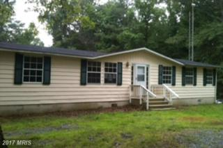 14362 Kings Mill Road, King George, VA 22485 (#KG9917353) :: Pearson Smith Realty