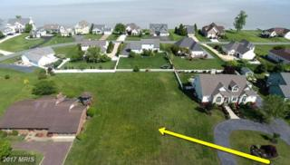 Tides Road, King George, VA 22485 (#KG9930384) :: Pearson Smith Realty