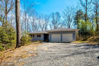10475 Attopin Lookout Road, King George, VA 22485 (#KG9936543) :: Pearson Smith Realty