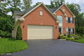 11595 Hopyard Drive, King George, VA 22485 (#KG9957994) :: Pearson Smith Realty