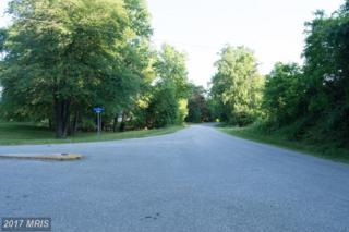 Grogan Lane, King George, VA 22485 (#KG9960177) :: Pearson Smith Realty