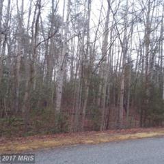 Windway Lane, Mineral, VA 23117 (#LA9841684) :: Pearson Smith Realty