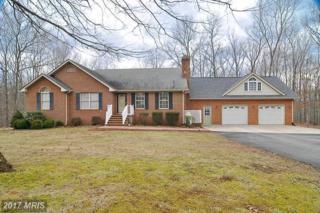501 Spring Hill Drive, Gordonsville, VA 22942 (#LA9851501) :: Pearson Smith Realty
