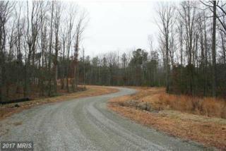 17 Winding Ridge Way, Bumpass, VA 23024 (#LA9868511) :: Pearson Smith Realty