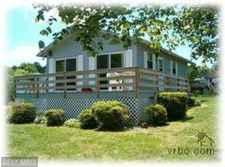 48 Lakeview Drive, Mineral, VA 23117 (#LA9872401) :: LoCoMusings
