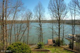 193 White Oak Drive, Mineral, VA 23117 (#LA9902374) :: Pearson Smith Realty