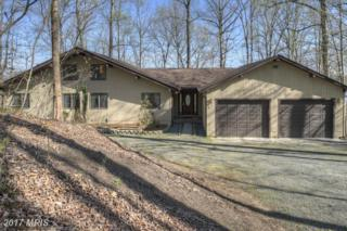 399 Mountain View, Mineral, VA 23117 (#LA9905403) :: Pearson Smith Realty