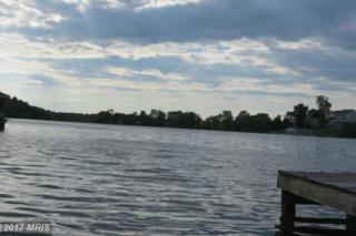 Woodland Shores Drive Lot #23, Louisa, VA 23093 (#LA9911578) :: Pearson Smith Realty