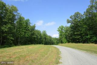 2 Dove Hollow, Louisa, VA 23093 (#LA9918323) :: Pearson Smith Realty
