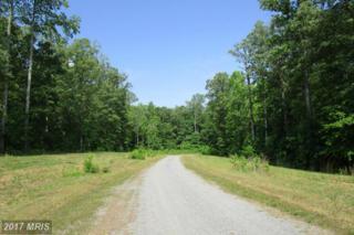 6 Dove Hollow, Louisa, VA 23093 (#LA9918367) :: Pearson Smith Realty