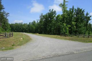 8 Dove Hollow, Louisa, VA 23093 (#LA9918376) :: Pearson Smith Realty