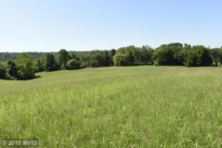 Sally Mill Road, Middleburg, VA 20117 (#LO9750460) :: Pearson Smith Realty