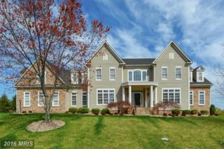 41600 Swiftwater Drive, Leesburg, VA 20176 (#LO9810564) :: Pearson Smith Realty