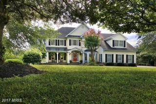 17240 Brookdale Lane, Round Hill, VA 20141 (#LO9833052) :: Pearson Smith Realty