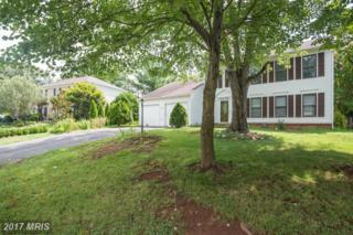 10136 Yorktown Drive, Great Falls, VA 22066 (#LO9837689) :: Pearson Smith Realty