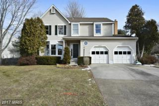 20072 Great Falls Forest Drive, Great Falls, VA 22066 (#LO9838812) :: Pearson Smith Realty