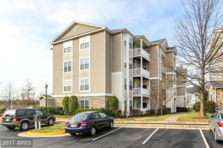 512 Sunset View Terrace SE #108, Leesburg, VA 20175 (#LO9840584) :: LoCoMusings