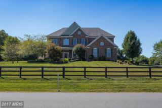 36335 Silcott Meadow Place, Purcellville, VA 20132 (#LO9841266) :: Pearson Smith Realty