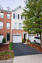20459 Alicent Terrace, Ashburn, VA 20147 (#LO9842350) :: LoCoMusings