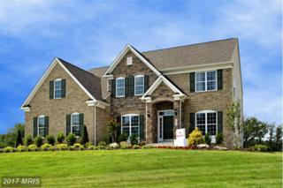11491 Falconaire Place, Leesburg, VA 20176 (#LO9843597) :: LoCoMusings
