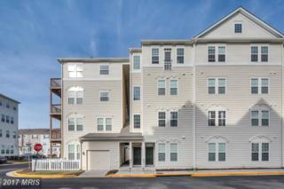 42323 San Juan Terrace 7-201, Aldie, VA 20105 (#LO9843667) :: LoCoMusings