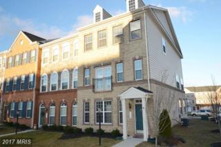 1719 Taymount Terrace NE, Leesburg, VA 20176 (#LO9844943) :: Pearson Smith Realty