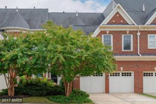 43711 Burning Sands Terrace, Leesburg, VA 20176 (#LO9845497) :: Pearson Smith Realty