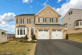 26051 Blackberry Knoll Court, Aldie, VA 20105 (#LO9846456) :: LoCoMusings