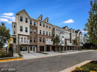 43366 Town Gate Square, Chantilly, VA 20152 (#LO9848403) :: Pearson Smith Realty
