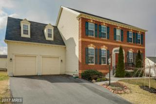 20953 Windowsills Way, Leesburg, VA 20175 (#LO9849175) :: Pearson Smith Realty