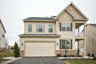 42715 Macauley Place, Ashburn, VA 20148 (#LO9849320) :: Pearson Smith Realty