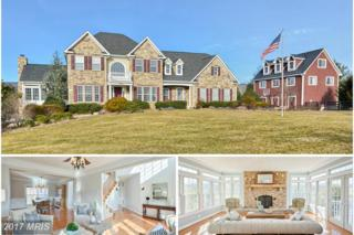 14401 Bookcliff Court, Purcellville, VA 20132 (#LO9849851) :: Pearson Smith Realty