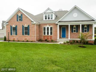 0 Lenah Trails Place, Aldie, VA 20105 (#LO9850092) :: Pearson Smith Realty