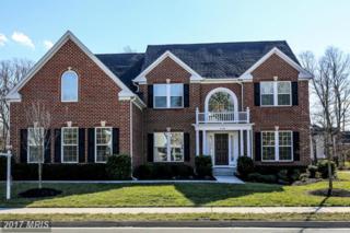 41591 Revival Drive, Ashburn, VA 20148 (#LO9851491) :: LoCoMusings