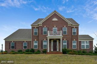 15706 Osterly Lane, Leesburg, VA 20176 (#LO9852567) :: Pearson Smith Realty