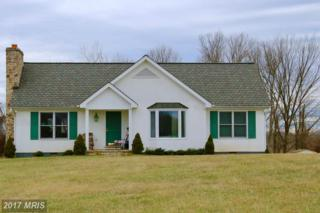 35673 Millville Road, Middleburg, VA 20117 (#LO9853514) :: Pearson Smith Realty